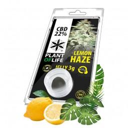 hash cbd lemon haze