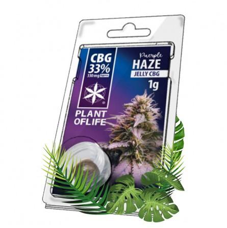 hash cbd purple haze cbg