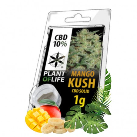 hash cbd mango kush
