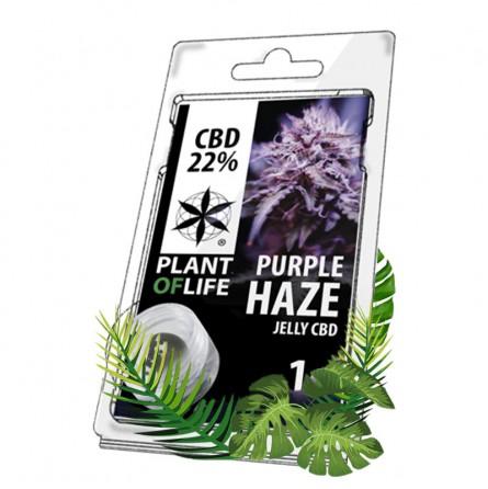 hash cbd purple haze