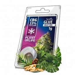 Jelly Gorilla Glue CBG